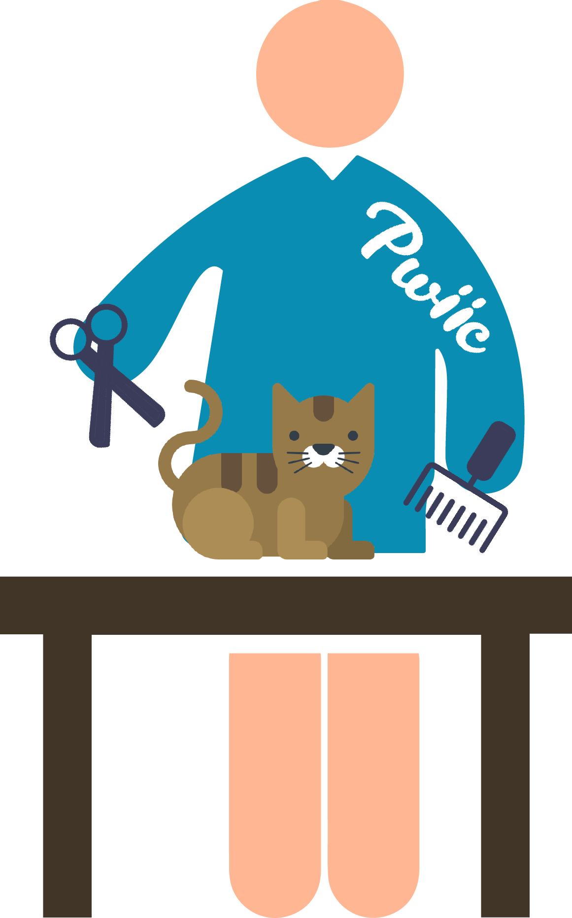 https://pwiic.com/fr/raissaamounie/Toiletteur-pour-chats