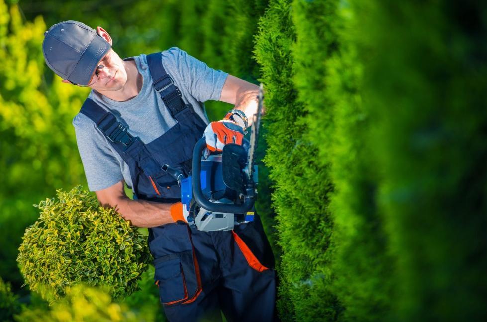 Vous Souhaitez Trouver Un Jardinier Près De Chez Vous Pour Vos Petits  Travaux De Jardinage Et Lu0027entretien De Votre Jardin Pas Cher ?